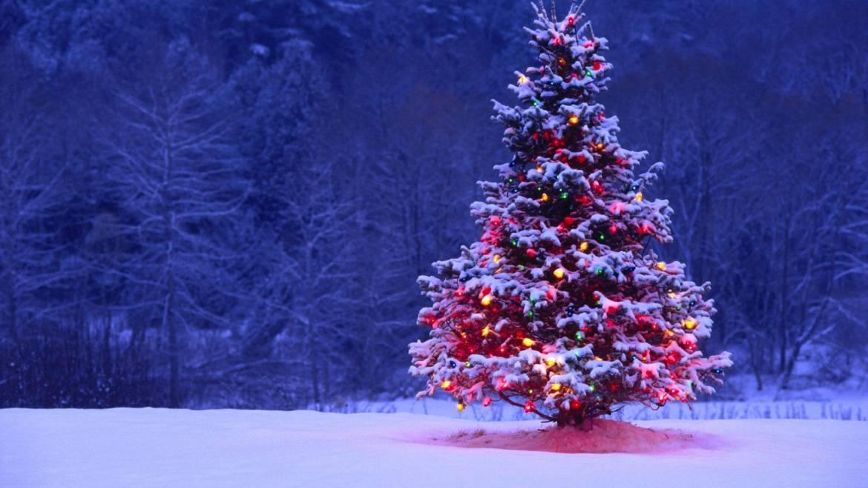 Free-Wallpaper-Christmas-Tree-2.jpg